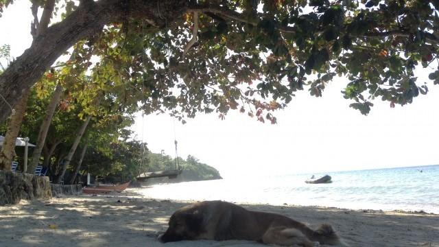 黒魔術のシキホール島おすすめリゾートホテルビーチ