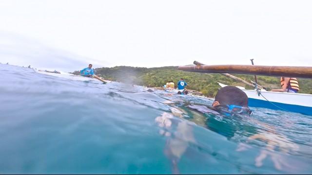 フィリピンセブ島オスロブでジンベイザメと泳ぐツアー