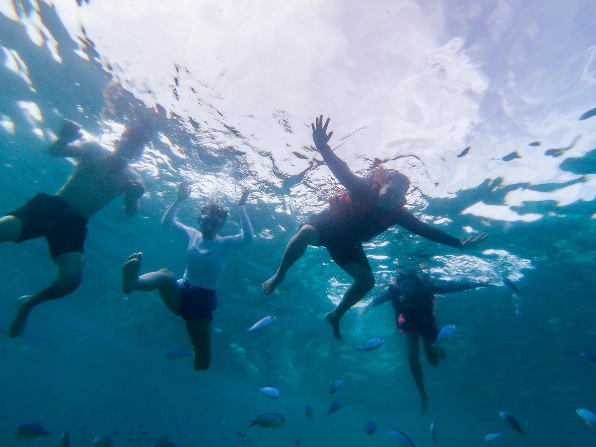 ウミガメと泳いだ!バリカサグ島アイランドホッピングツアー体験