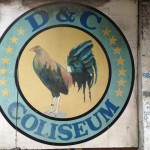 フィリピン 闘鶏 セブ