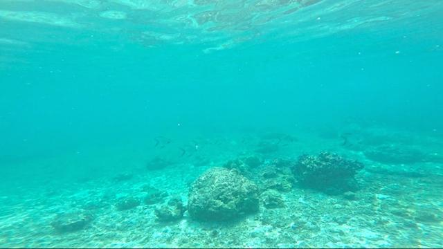 カランガマン島アイランドホッピングツアー