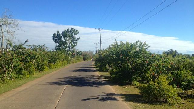 オランゴ島キャンプ