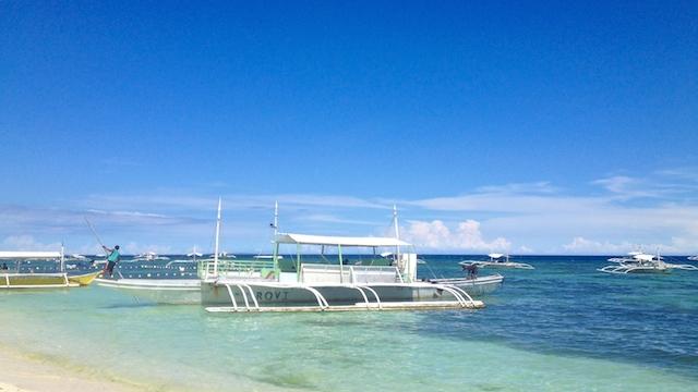 フィリピンセブ島でジンベイザメと泳ぐツアーは参加必須