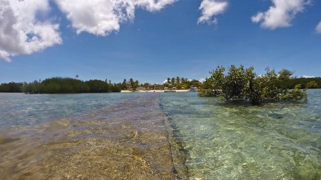 オランゴ島シュノーケル