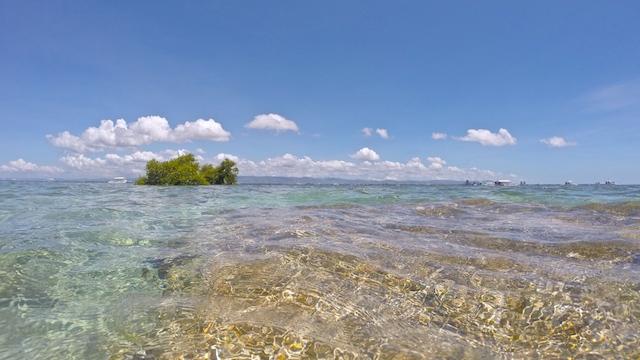 オランゴ島サンクチュアリ