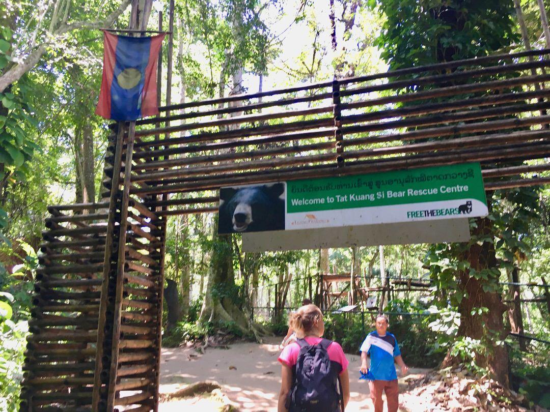 ルアンパバーンのツキノワグマ保護センター